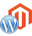 wordpress magento website